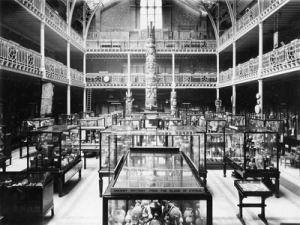 Pitt Rivers b and w