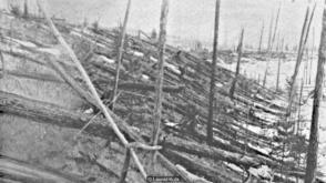 tungunska-destruction